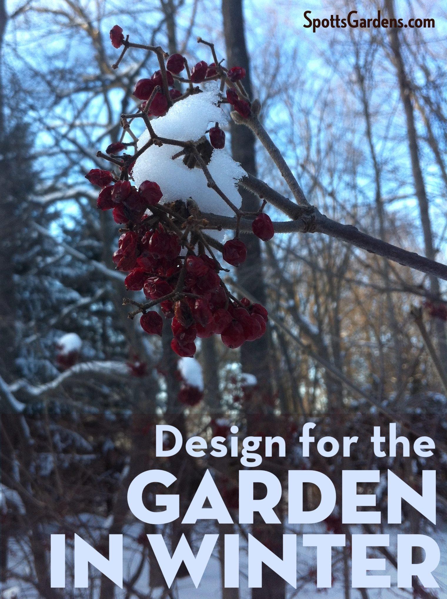 Design for the garden in winter
