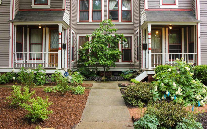 An Urban Shade Garden