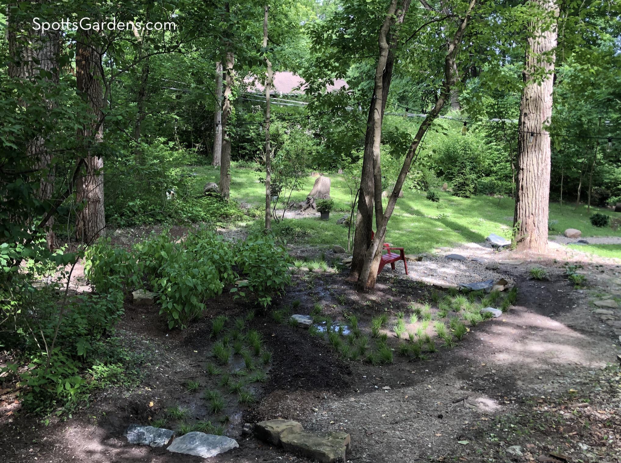 Rainscaping throughout the garden