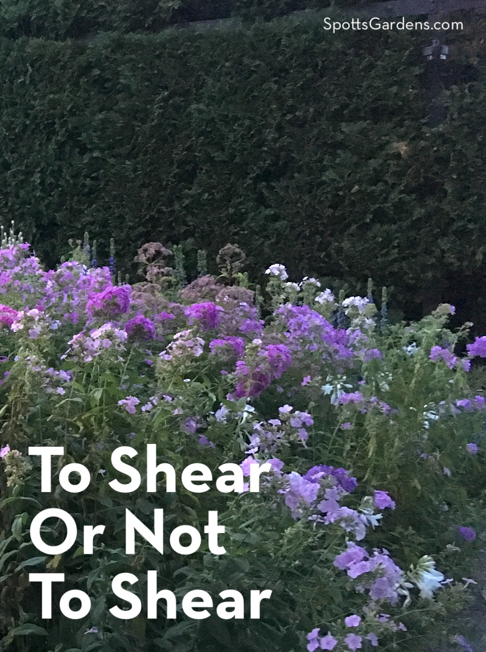 To Shear or Not to Shear