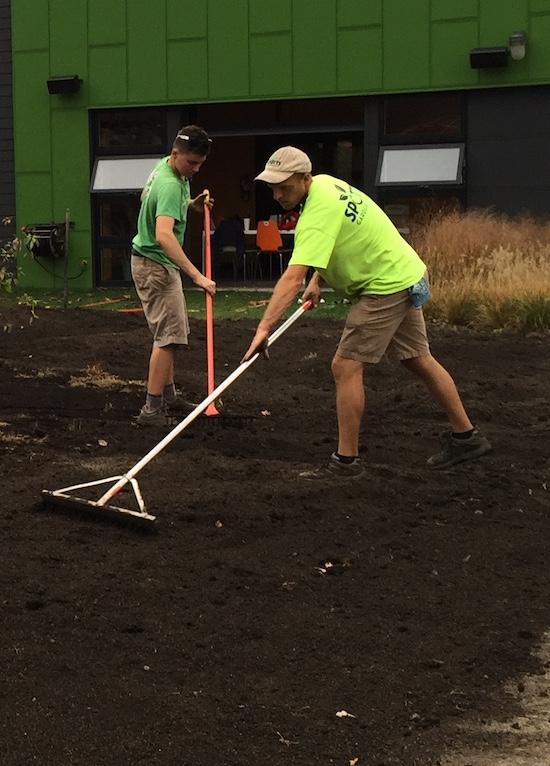 Raking out compost in the Spotts Garden Service garden