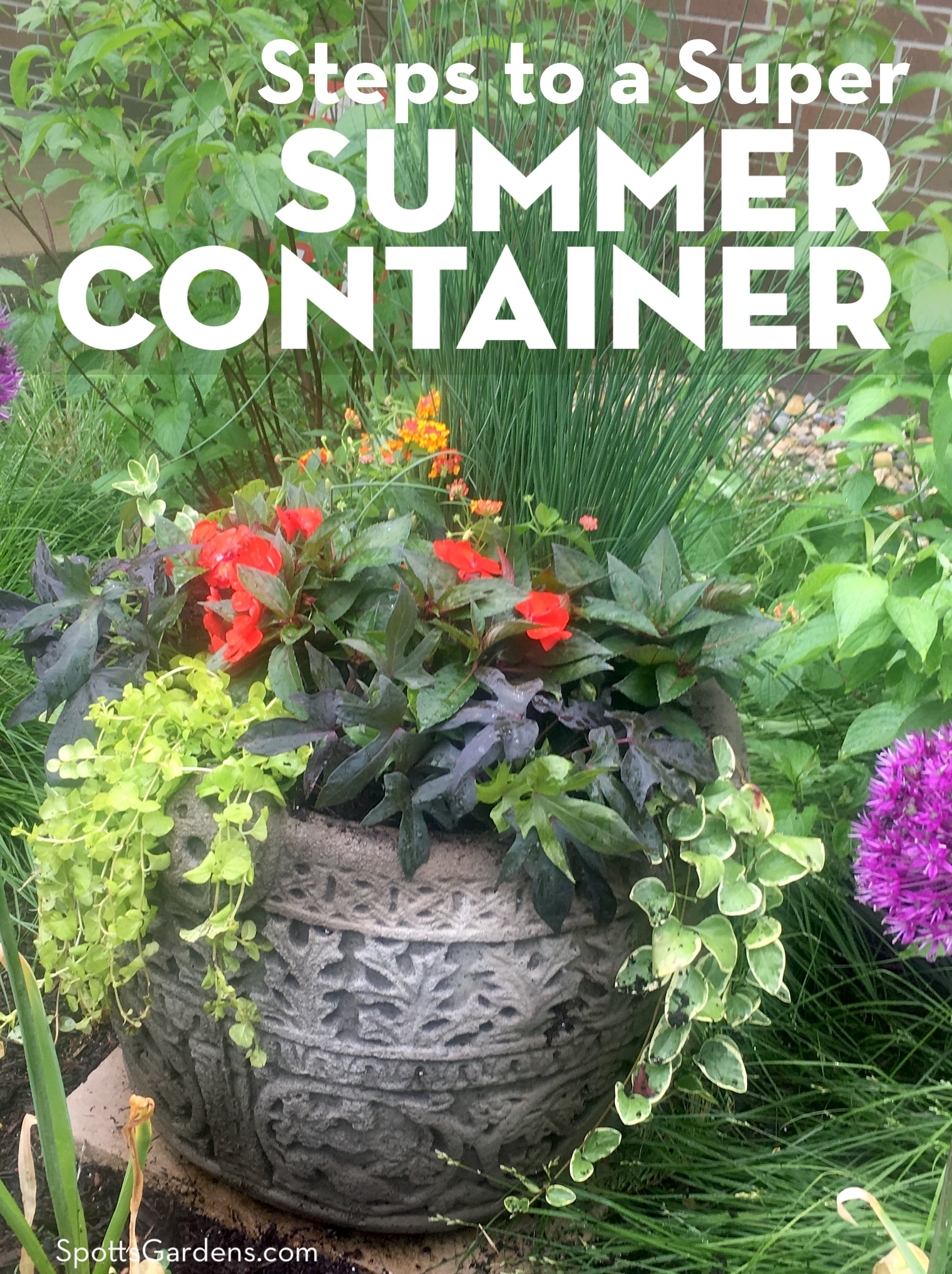 Steps to a Super Summer Container