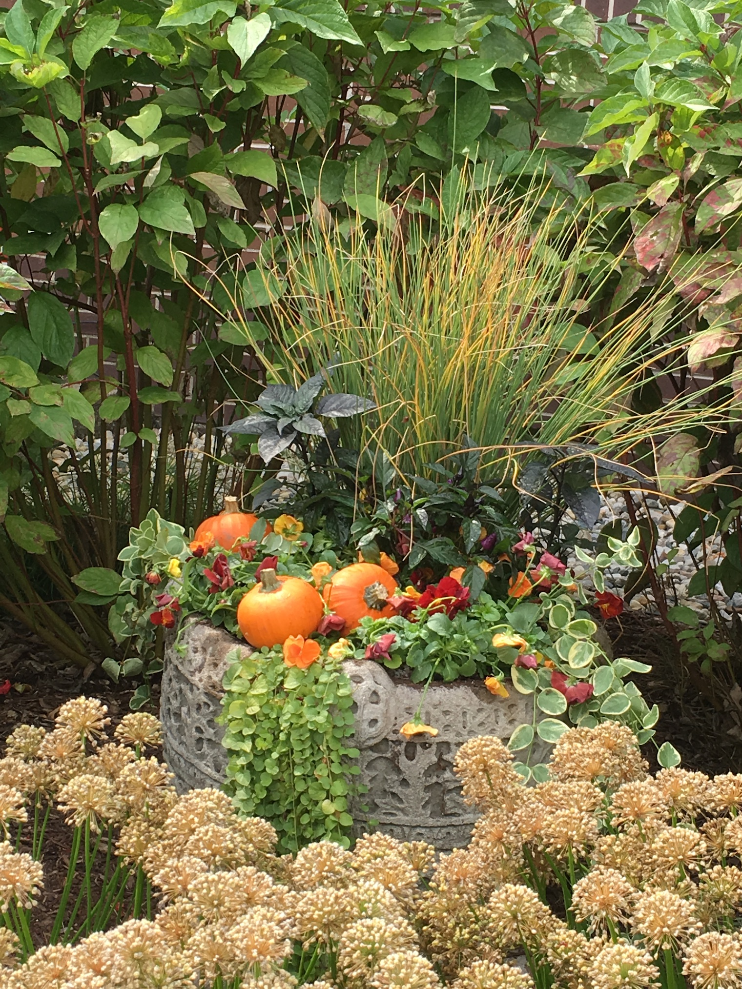 Creating Great Fall Containers