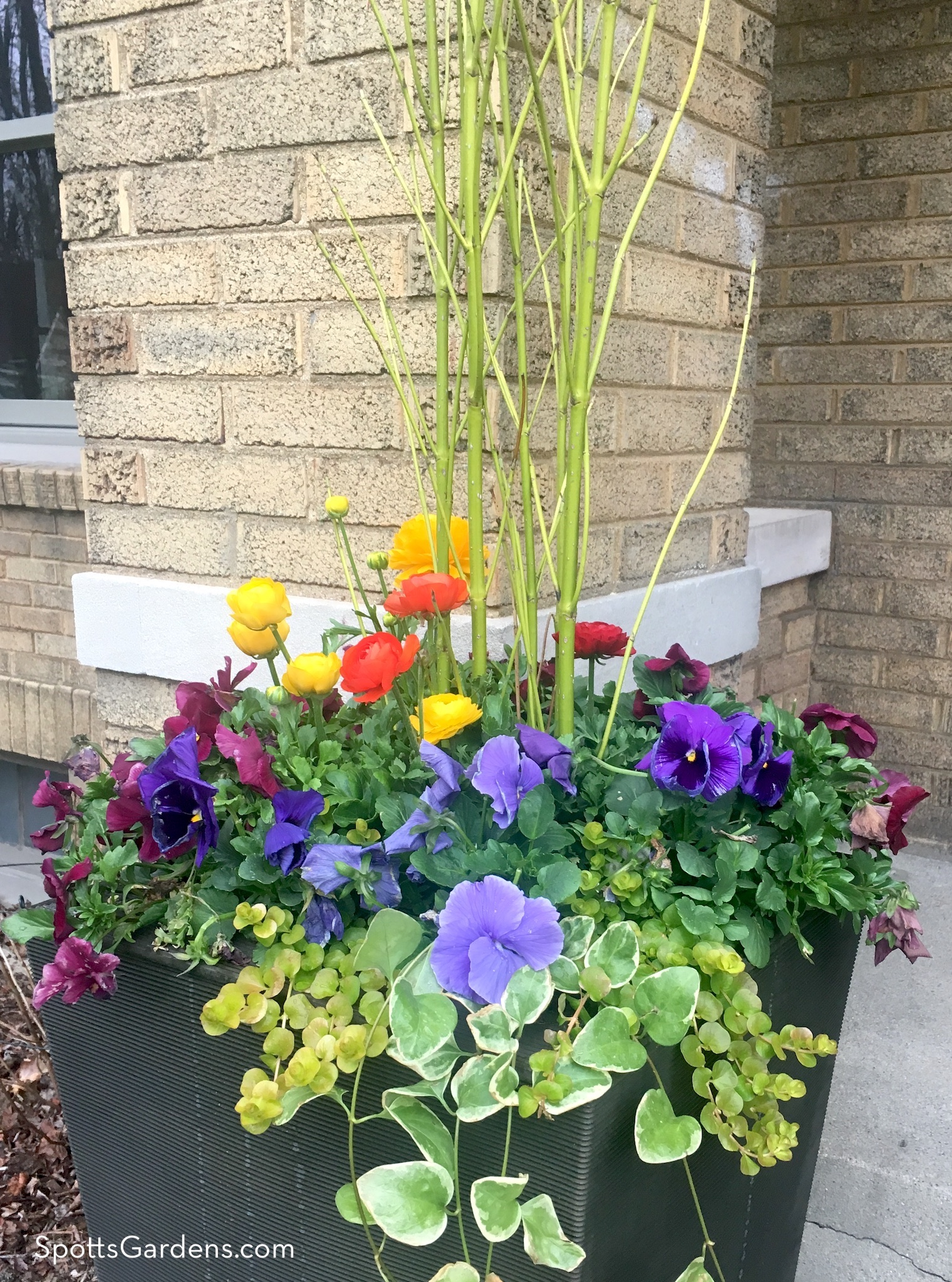 Spring mixed container